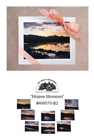 """""""Mojave Monsoon""""     #AW070"""