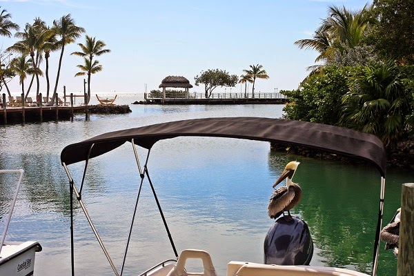 pelican cove resort florida keys.jpg