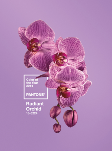 2014 Pantone Color of the Year Radiant Orchid