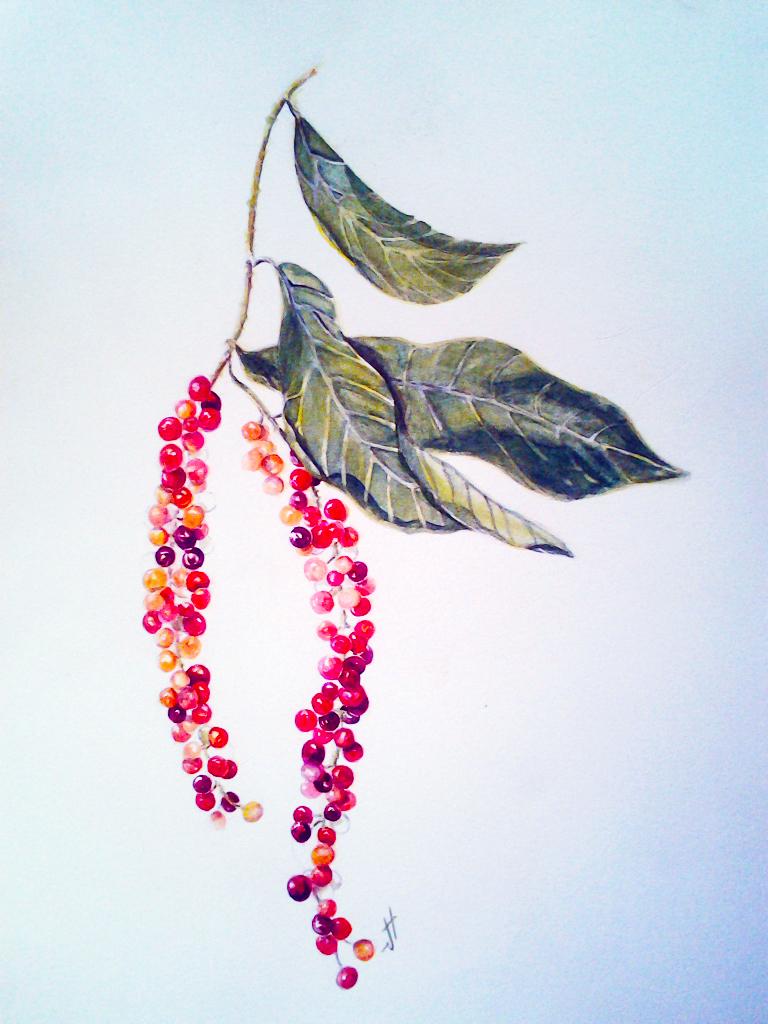 Long Berries