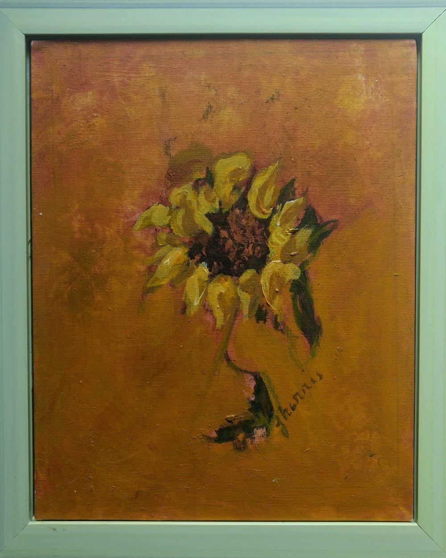 Sunflower Portrait 6