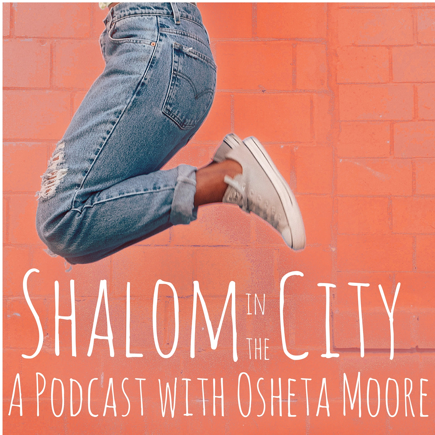 Shalom-Steps-6