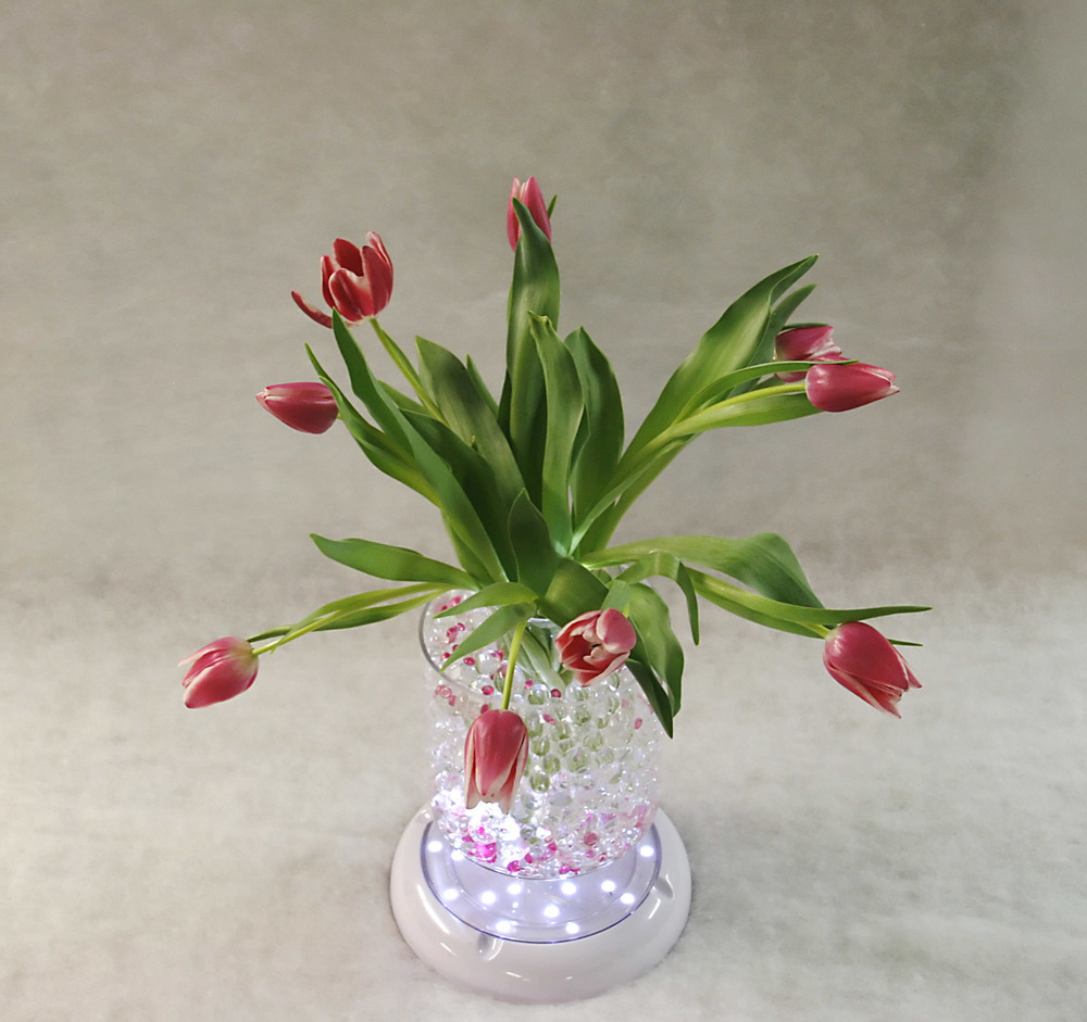 white vase light, razzleberry dark pink moon drops bright fill