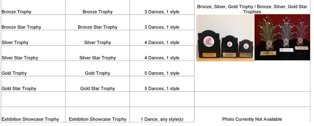 Assessment Awards-Medals-Trophies (3)-page-002.jpg