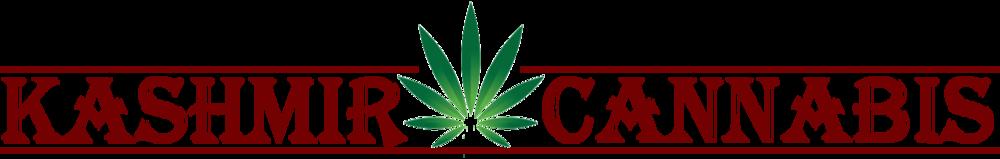 Kashmir Cannabis