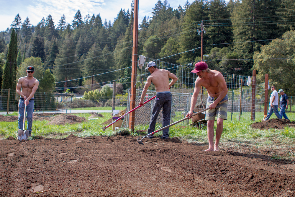 Nick Pavlina, Taylor West and Ryan Grable paving the way for the hop farm.