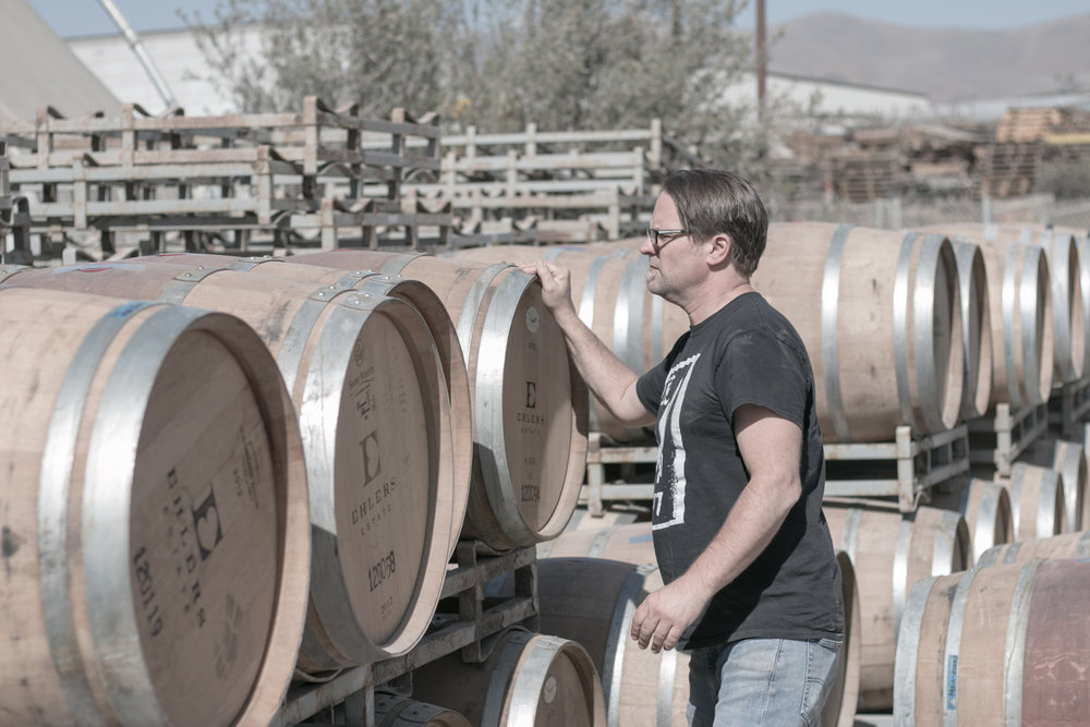Shane searching for the perfect red wine barrel.