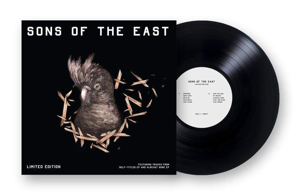 Physical Vinyl for Online store.jpg
