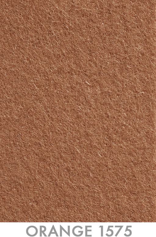 16_Orange 1575 - Pantone 1575ec.jpg