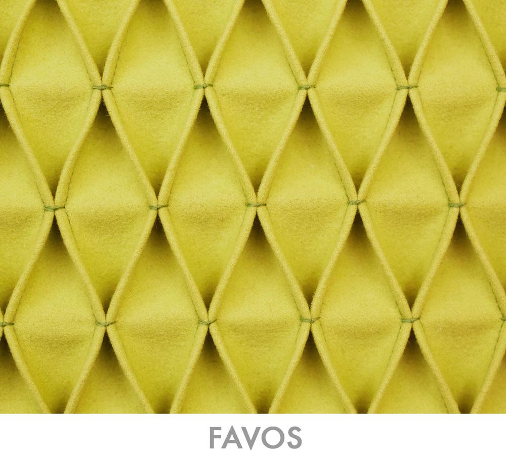 FAVOS_Text2.jpg
