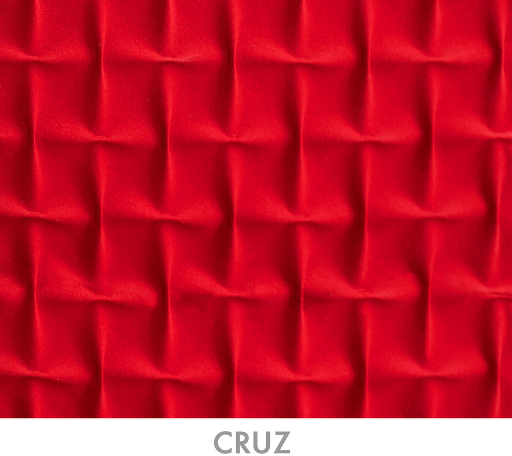 CRUZ_text.jpg