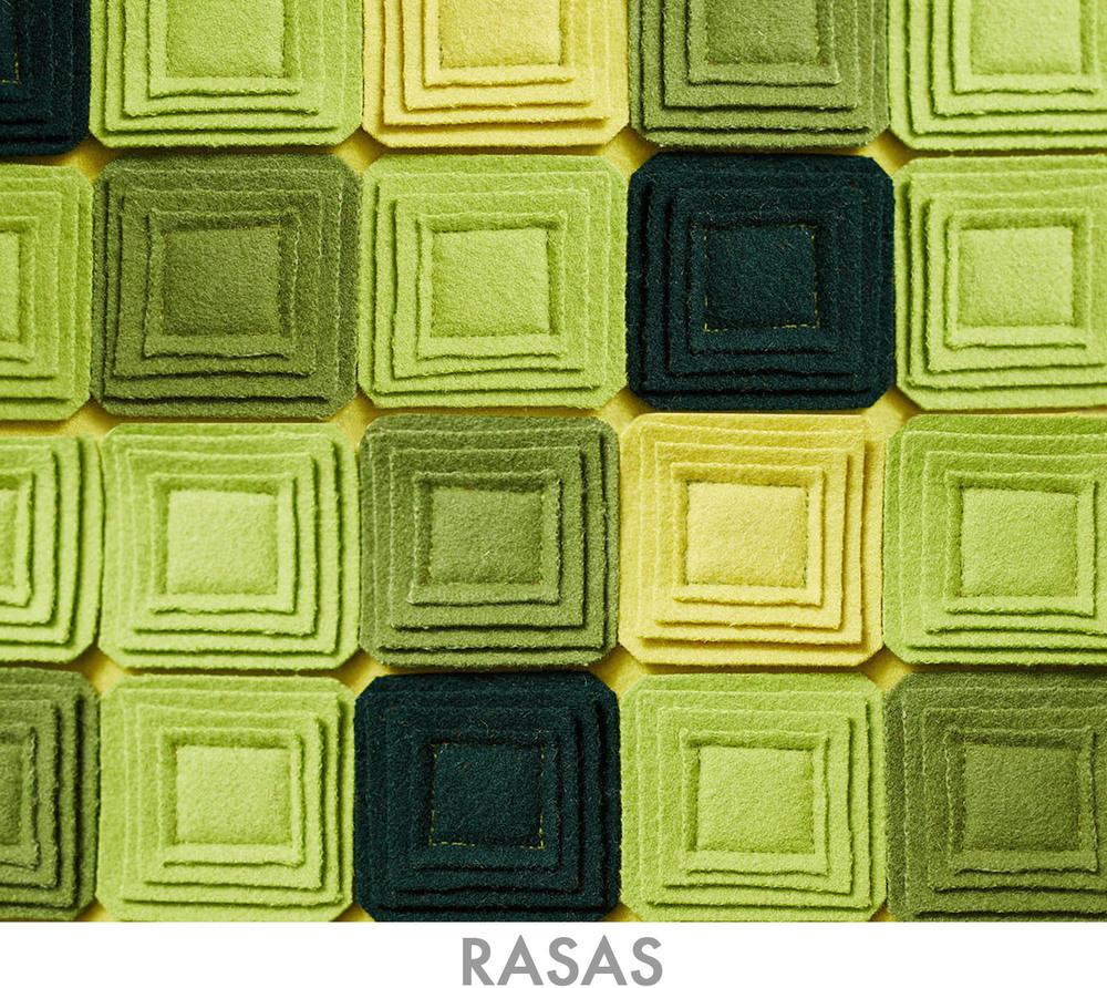 RASAS3 TEXT.jpg