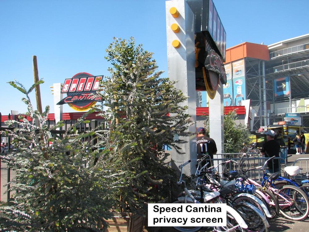 l Speed cantina Kruseana,s.jpg