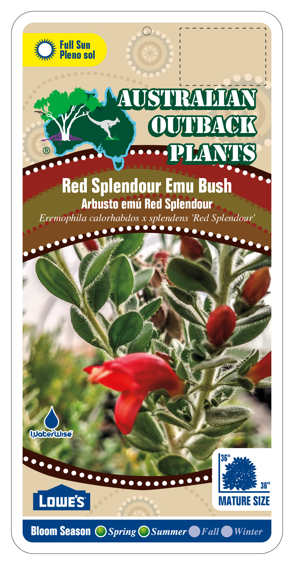 429894_FRONT-Red-Splendour-Emu-Bush.jpg