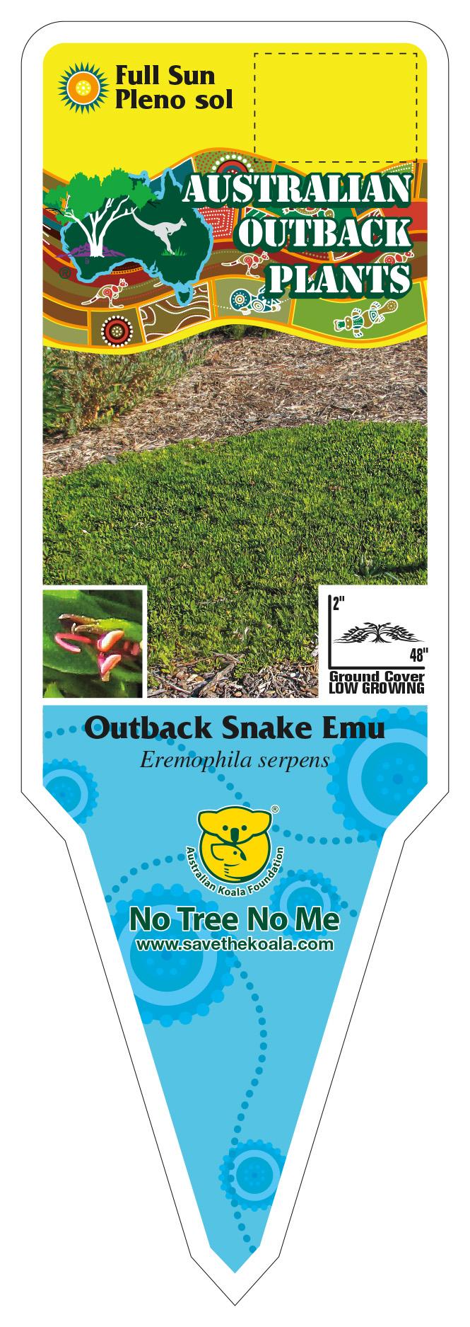 425591_FRONT-Outback-Snake-Emu.jpg
