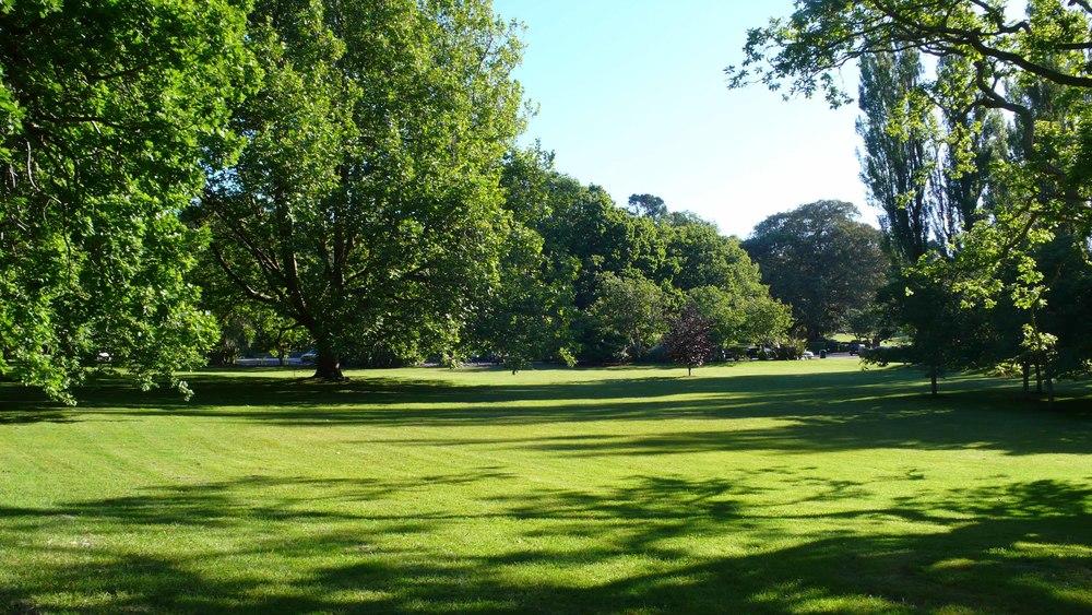 7_auckland-park.jpg