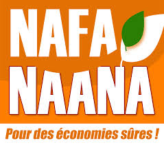 Nafa Naana - Burkina Faso Energy access at the household level