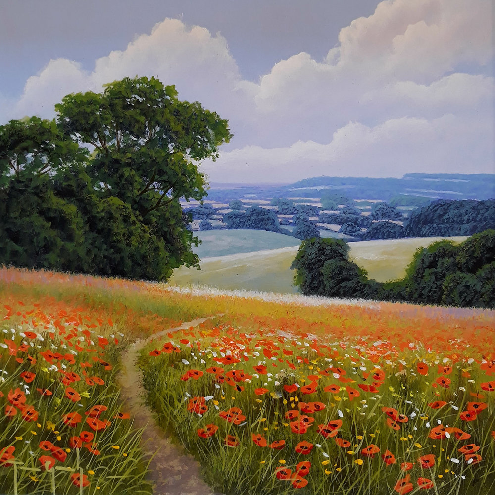 terry-grundy-poppy-pathway.jpg