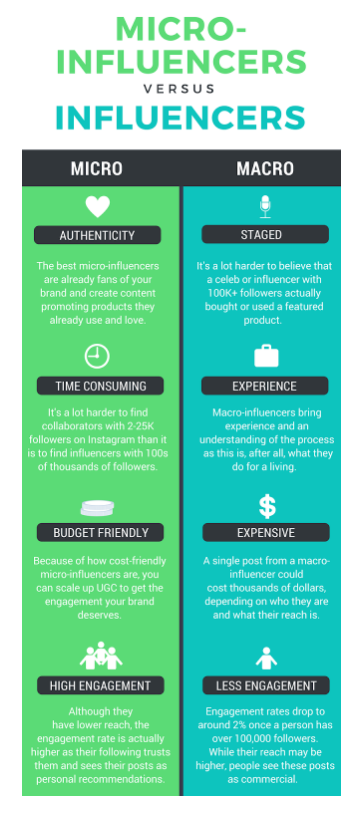 Influencer infographic