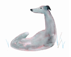 Greyhound1JustHound.png