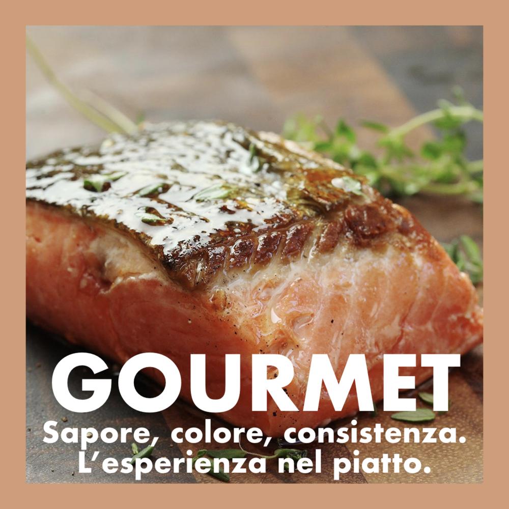 gastronomia per ristoranti
