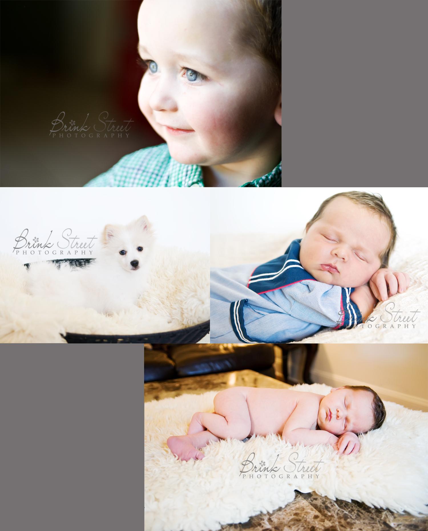 Austin Newborn Blog