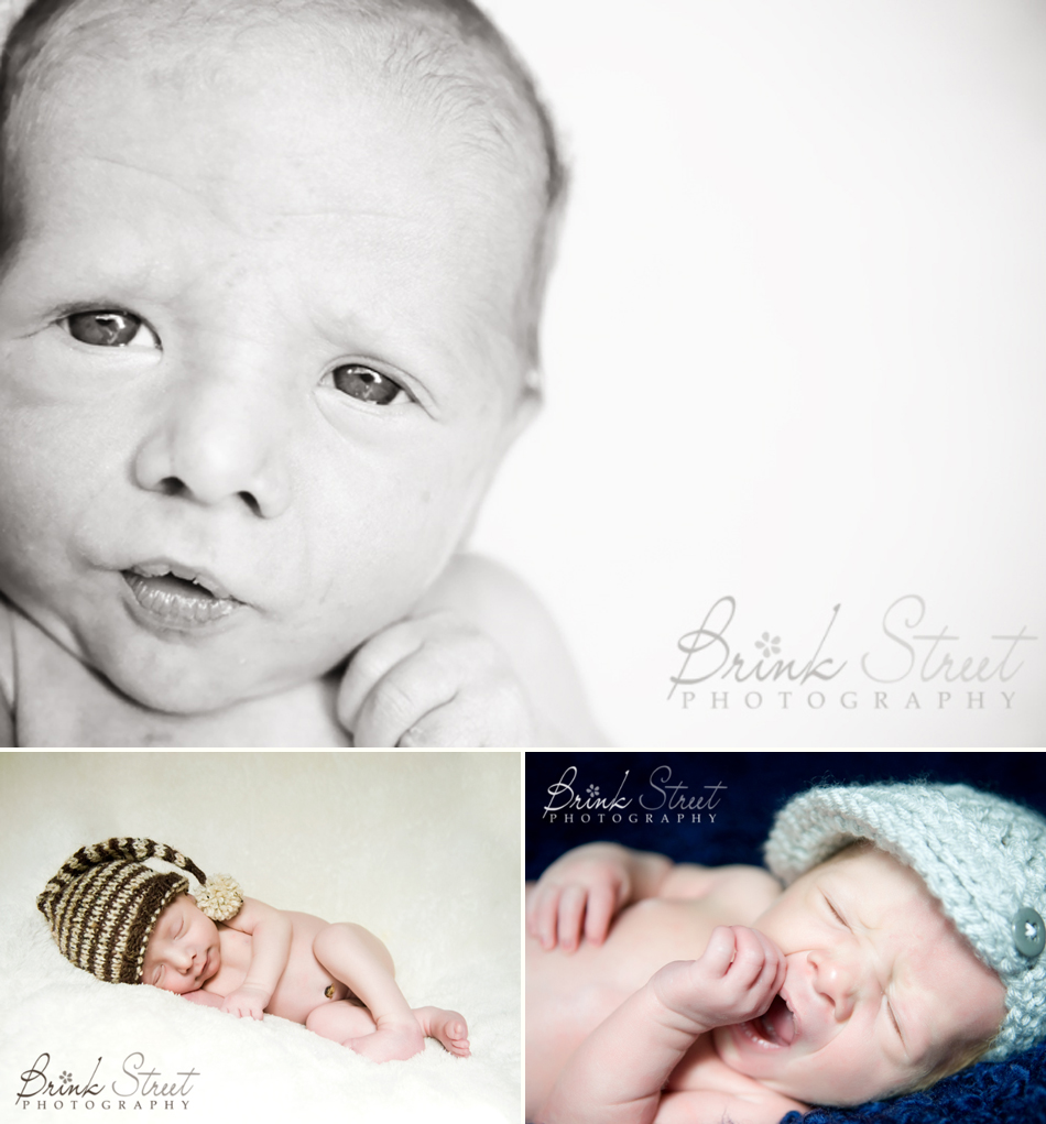 Stapleton Newborn Photographer