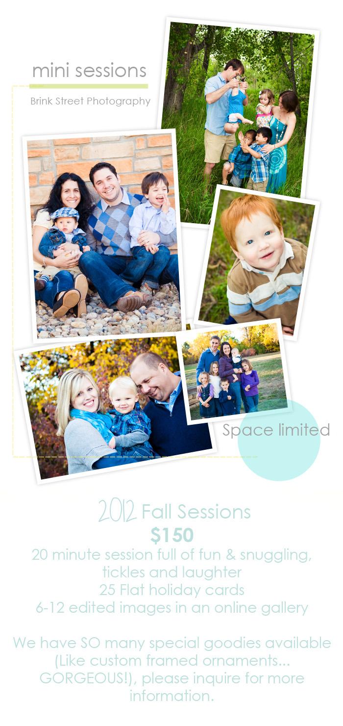 2012 Mini Sessions w- info