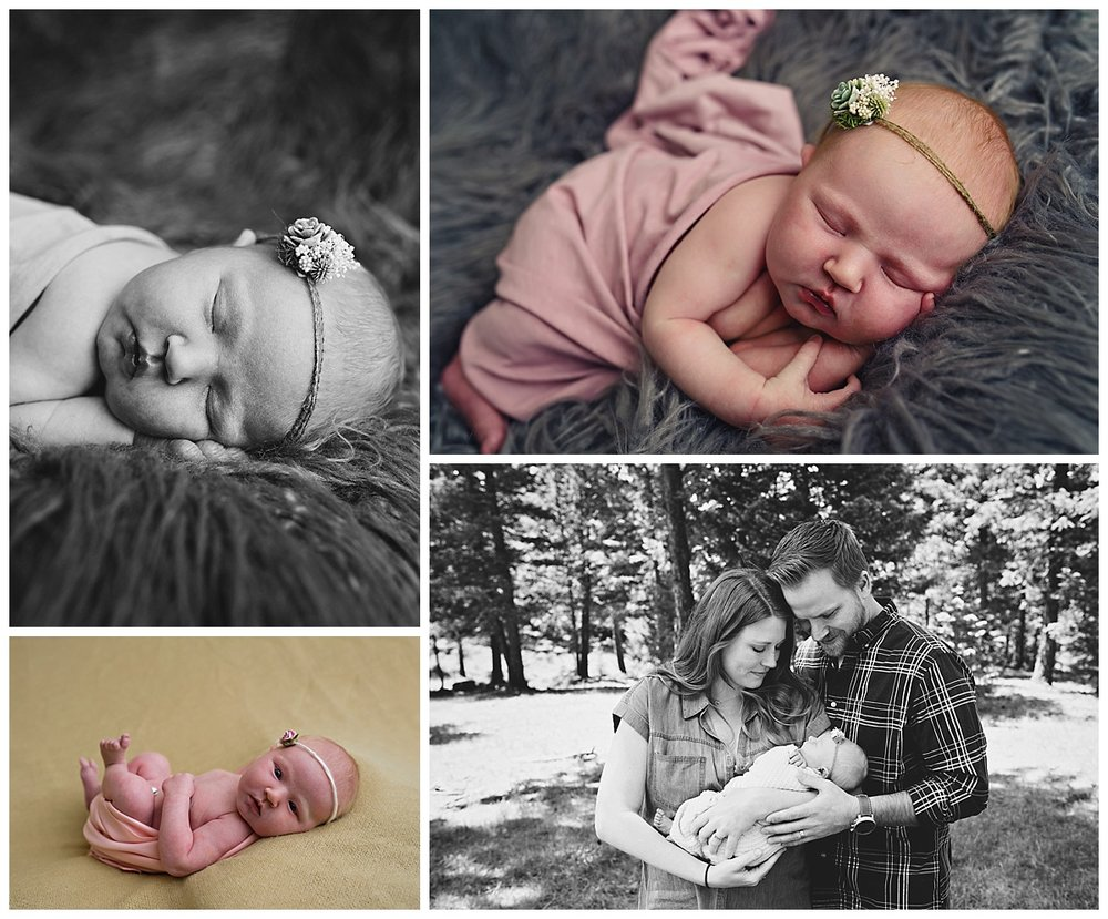 Evergreen-Colorado-Newborn-Baby-Photographer.jpg