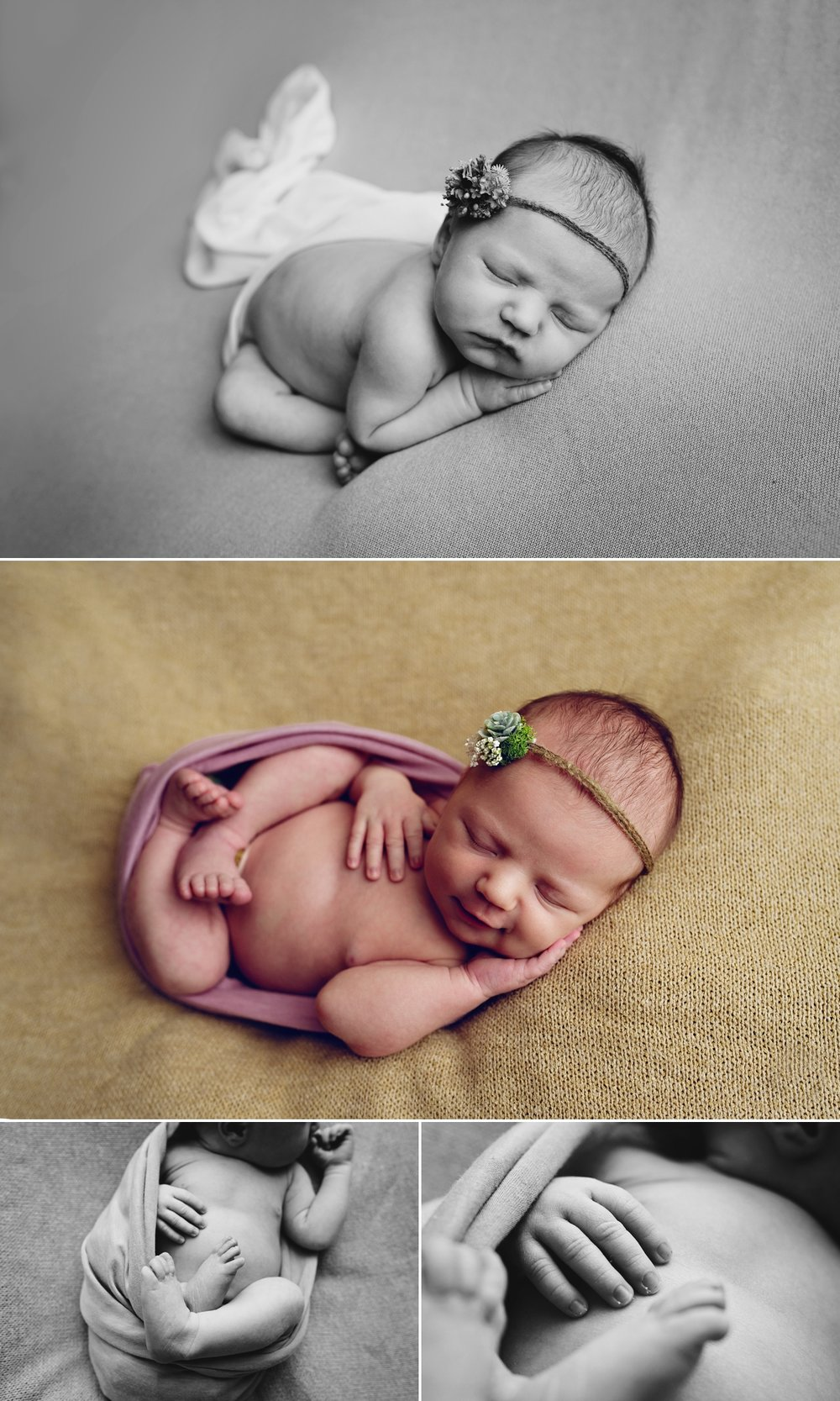 Aurora Colorado Newborn Girl Photographer 2.jpg