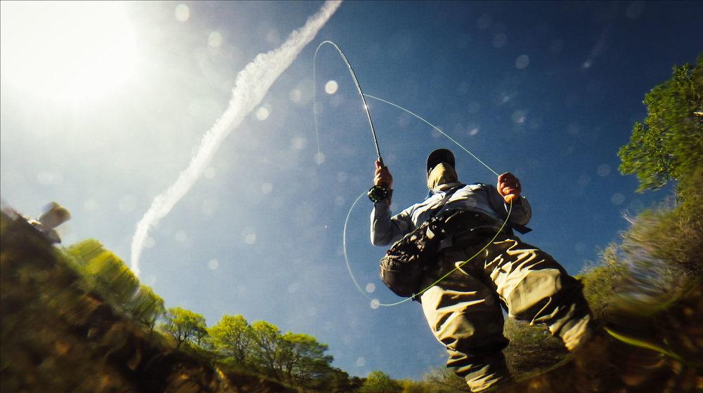 Fish and Hooking Fish.00_10_57_03.Still106.jpg