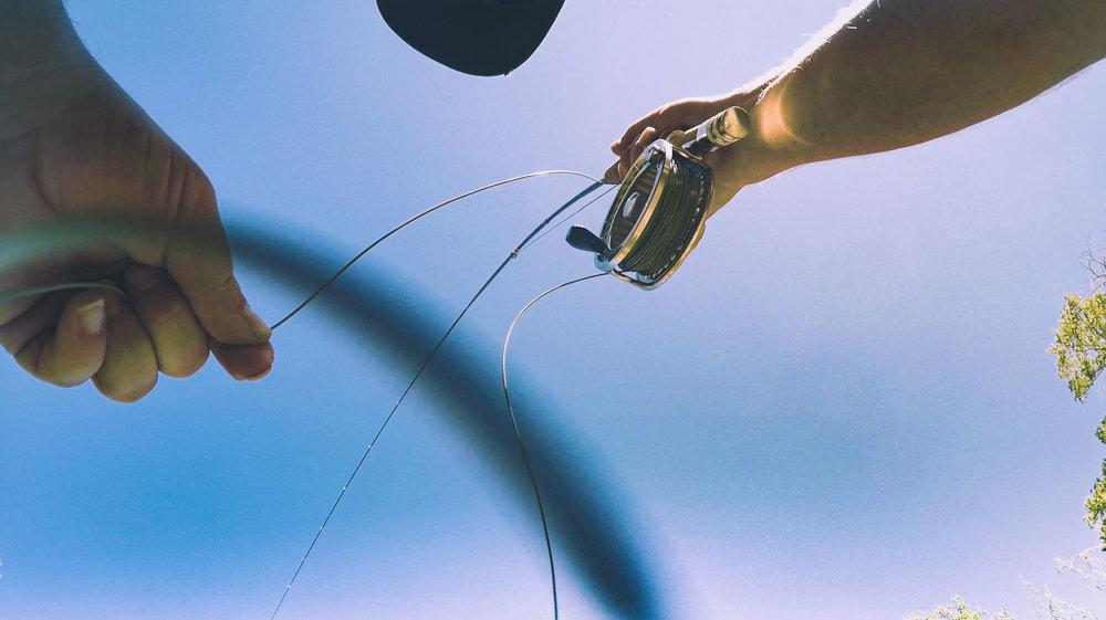 Fish and Hooking Fish.00_11_55_00.Still122.jpg