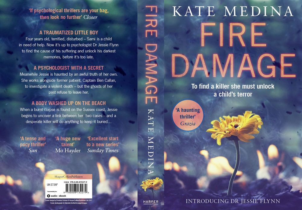 Fire Damage Paperback cover.jpg