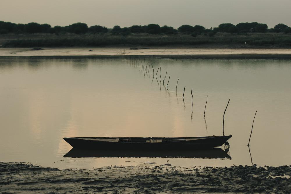A&Y Videography - Uttarayan 2014-375.jpg