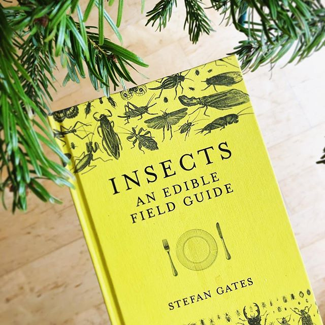 🦗 The field guide to eating insects we've all been waiting for! Incredible resource packed with exciting recipes and how-to's. I'm getting stuck in! . . #eatbugs #health #food #sustainable #living #explore #insects #entomophagy #tasty #crickets #mealworm #thailand #fieldguide #reading #book #cook #foodie