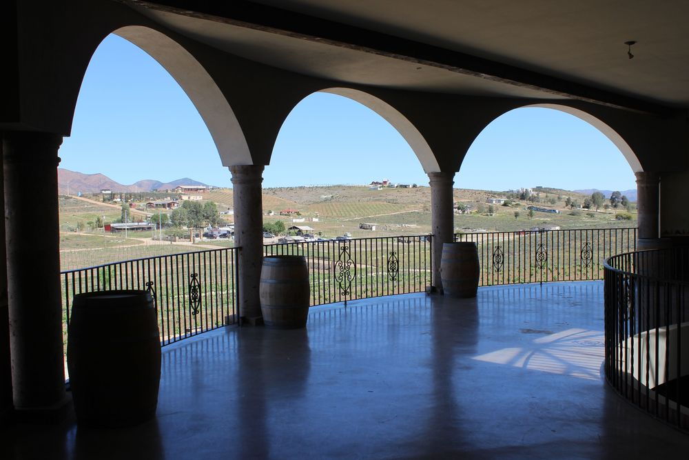 View from inside Hacienda La Lomita in Valle de Guadalupe