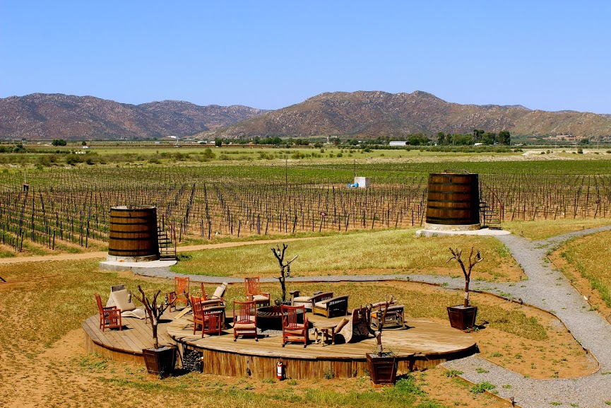 Valle de Guadalupe winery