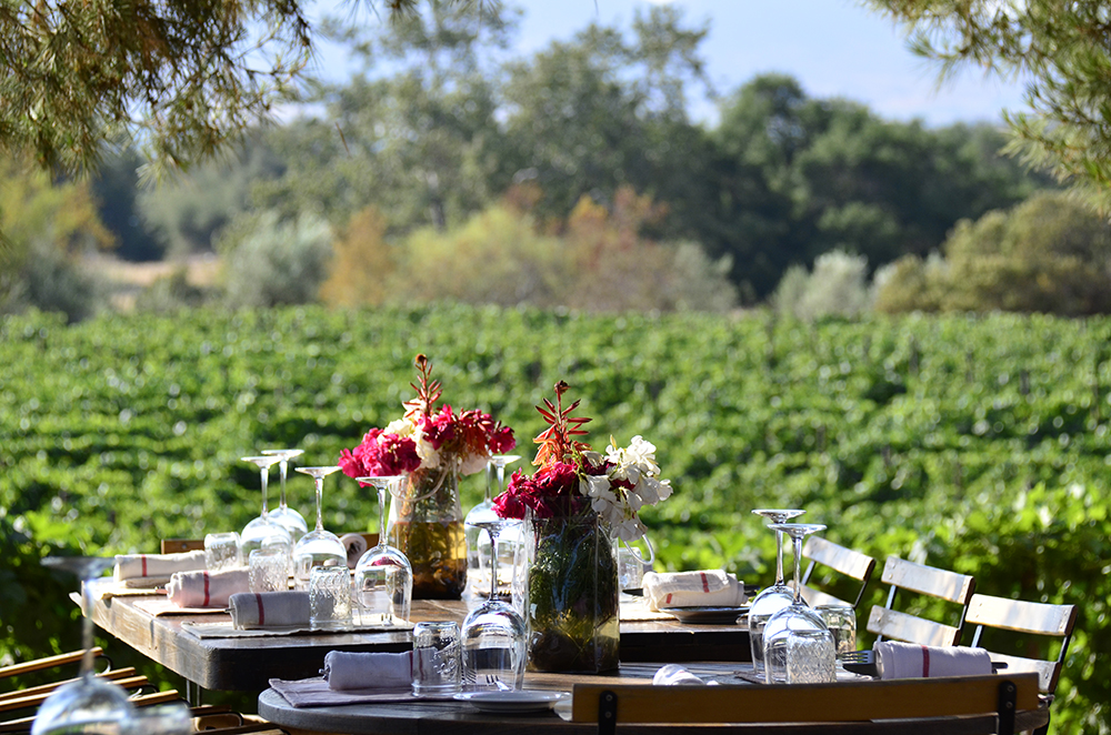 Valle de Guadalupe weddings and events