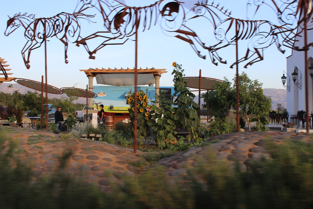 Baja Winery Tours Valle de Guadalupe art
