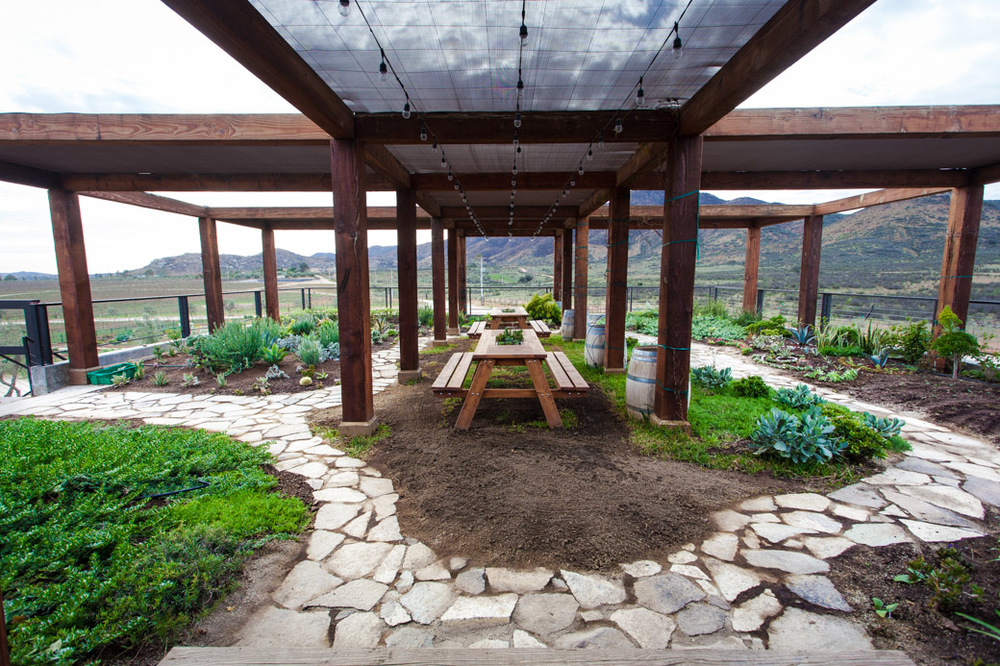 Valle de guadalupe winery tours