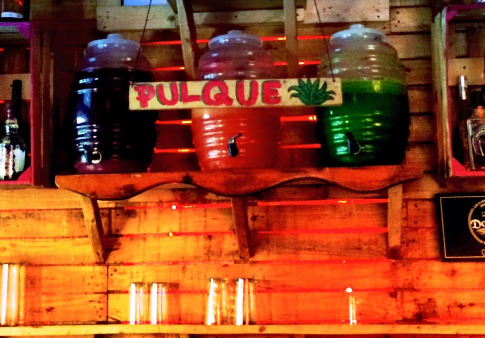 Photo of the homemade pulque taken by Zenzontle Tijuana
