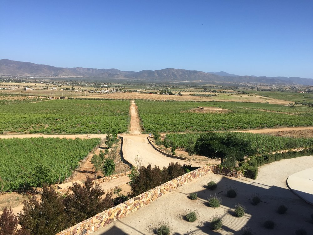 A beautiful day in Mexico's wine country!