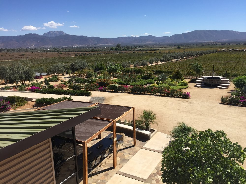Scenery of Valle de Guadalupe