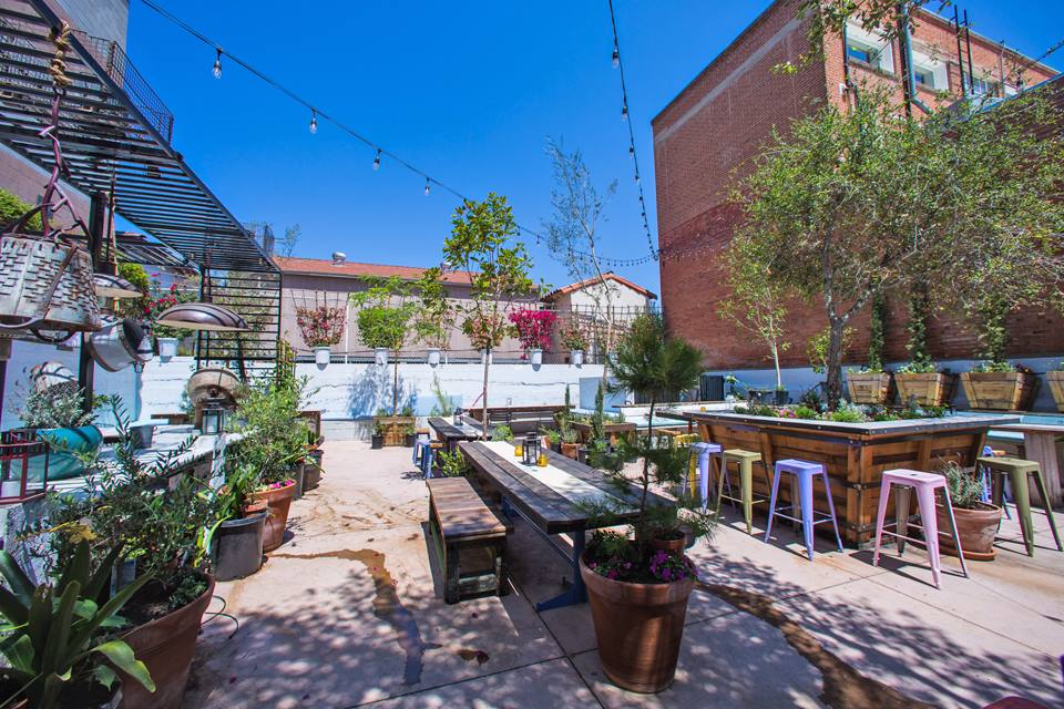 The wine garden in Little Italy. Photo credit:  Carruth Cellars Wine Garden