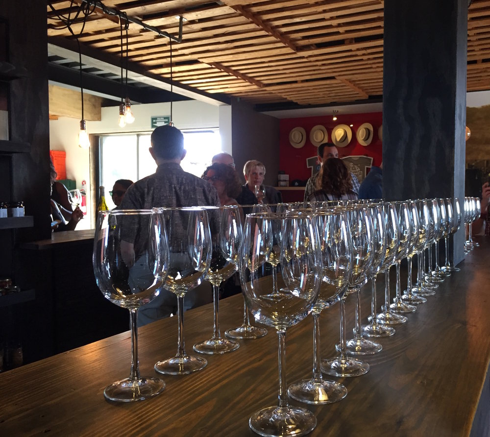 Wine tasting with Baja Winery Tours