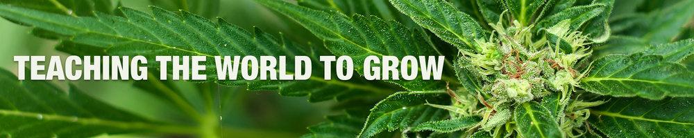 Teaching The World to Grow