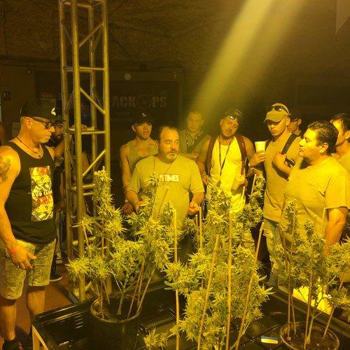 Senior Cultivation Editor Danny Danko