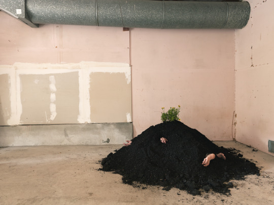 "Buried in my Garage, 2014 c-print 34"" x 46"""