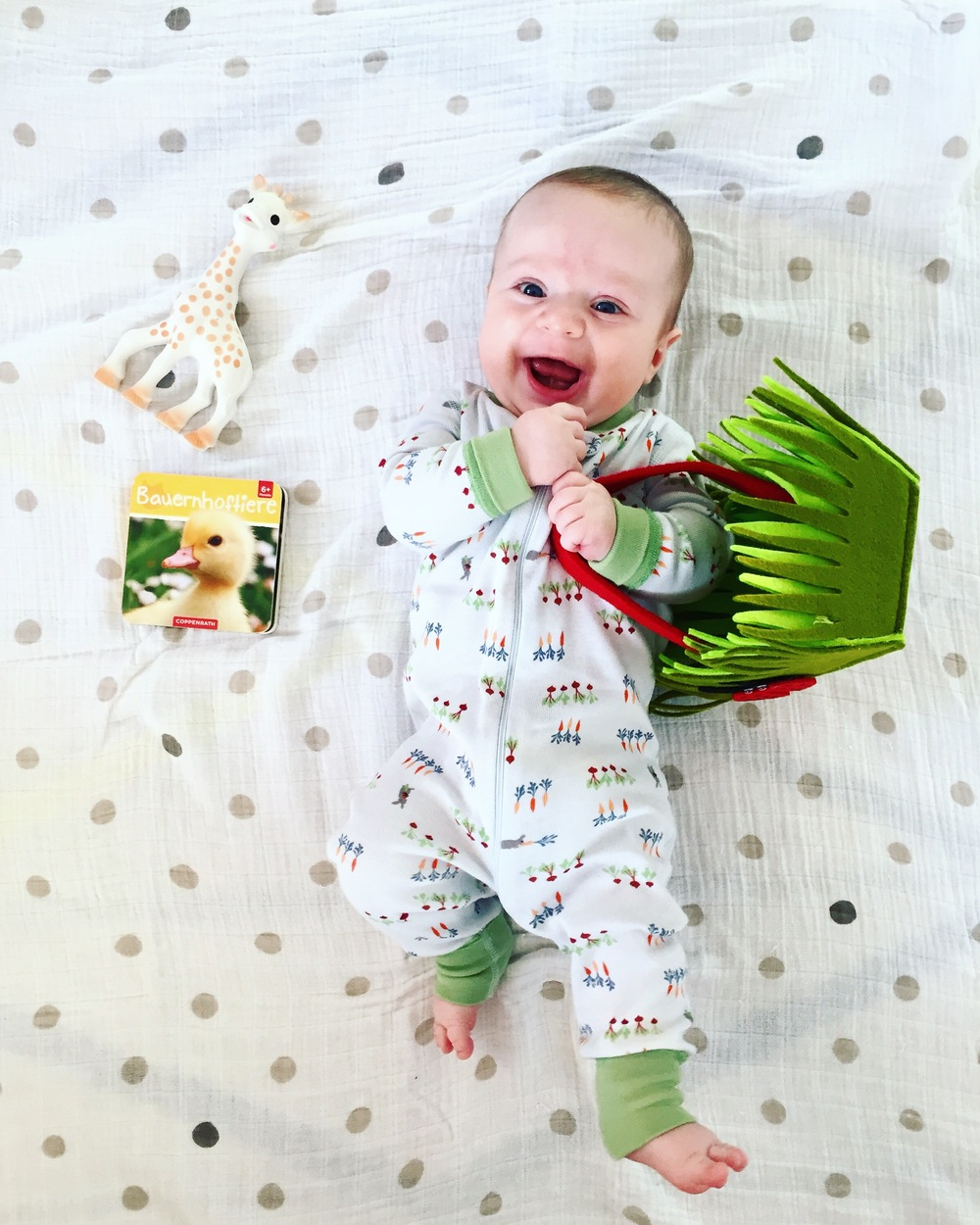 The Easter bunny brought Miles a Sophie la Girafe teething toy and his first German books, and Mommy and Daddy hosted a yummy brunch for friends!