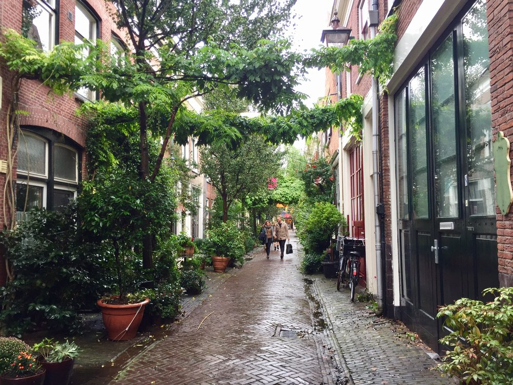 Another gorgeous side street in Haarlem. Photo taken with iPhone 6.